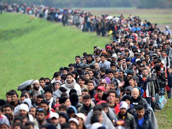 В ООН заявили о новом рекорде по численности мигрантов.