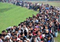 Число мигрантов в мире достигло 272 млн человек