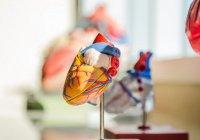 Назван простой способ защититься от инсультов и инфарктов