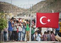 Количество сирийских беженцев в Турции перевалило за 3,6 млн