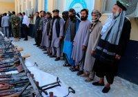 В ОДКБ назвали число террористов в Афганистане