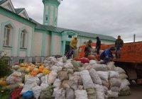 В Татарстане собрано более тысячи тонн гушр-садаки, сбор продолжается