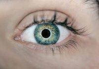 Уникальная операция на глазах проведена в Японии