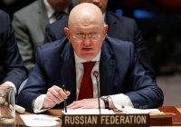 Россия готова помочь в борьбе с радикализацией молодежи Африки