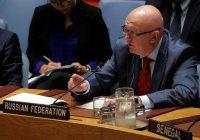 Небензя: саммит Россия-Африка будет способствовать укреплению стабильности региона