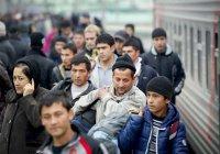 Эксперт: в 2019 году Россия примет рекордное число мигрантов