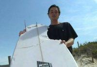 В Австралии серфер рассказал о столкновении с громадной акулой