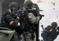 15 террористических преступлений предотвратили на Северном Кавказе с начала года