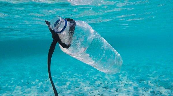 Другим значимым источником загрязнения также являются пластиковые рыболовные сети, унесенные течением