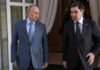 Путин и Бердымухамедов обсудили экономическое сотрудничество