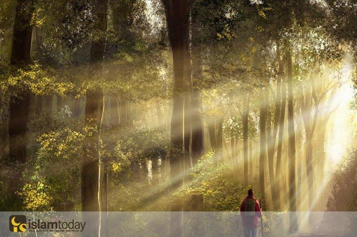 Твой Господь лучше знает тех, кто сошел с Его пути. (Источник фото: yandex.com)