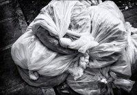 В России предложили запретить пластиковые пакеты