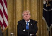 Трамп: «ИГИЛ находится под полным контролем»