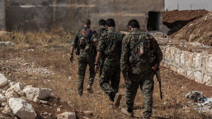 Российские военные назвали численность боевиков в Идлибе.