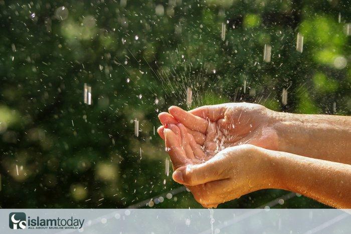 Какие сунны нужно исполнять во время дождя.