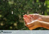 6 cунн во время дождя: просто, но важно