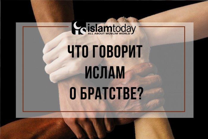 Верующие в своем отношении друг к другу должны вести себя как части единого тела – когда болеет один орган, все тело испытывает боль. (Источник фото: oren.ru)