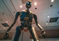 Выяснилось, когда в России появятся роботы-полицейские
