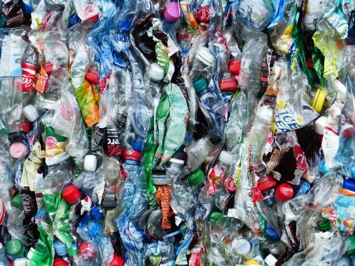 Заявления компаний об использовании перерабатываемой упаковки, говорят специалисты Greenpeace, проблемы загрязнения не решают