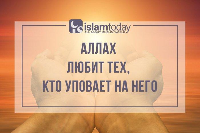 Уповайте же на Аллаха, если вы веруете