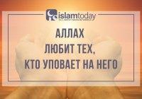 Почему так важно уповать только на Всевышнего Аллаха?