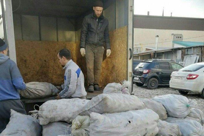 В нынешнем году в результате активного участия жителей Татарстана было собрано 1109,5 тонн овощей