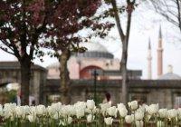 Эксперт: Турция остается самой безопасной для отдыха страной