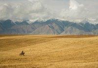 В Киргизии экс-советника Атамбаева приговорили к 7 годам лишения свободы