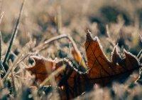 Аномально холодная погода в Татарстане сохранится до конца недели