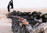 США: ИГИЛ может объявить имя нового главаря в ближайшие две недели