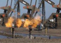 МИД РФ: США незаконно вывозят из Сирии нефть на миллионы долларов
