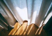 Стало известно, как побороть дефицит солнечного света