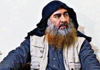 Турецкие силы задержали более десятка родственников аль-Багдади
