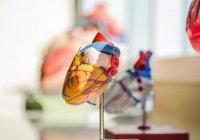 Выявлен способ предотвратить смерть от сердечного приступа