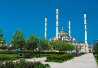 Выявлен самый дружелюбный российский город