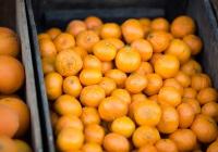 Диетолог сообщила, кому не стоит есть мандарины