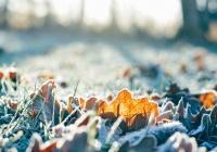 В Россию идут 40-градусные морозы