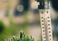 Синоптики рассказали, почему термометры «обманывают»