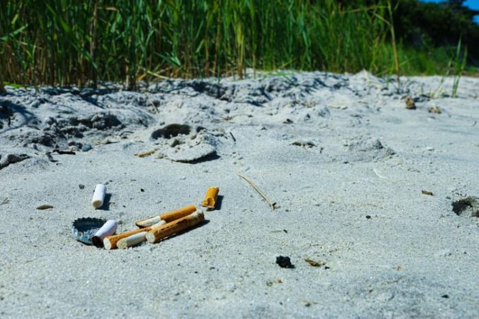Местное отделение Greenpeace провело мониторинг прибрежных зон России на предмет пластикового загрязнения и установило, что окурки составляют практически треть от общего объема отходов