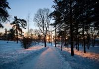 В России наступит «зимнее бабье лето»