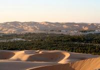 «Оазис толерантности» появился в ОАЭ
