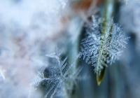 Россиян предупредили о потеплении после аномальных морозов