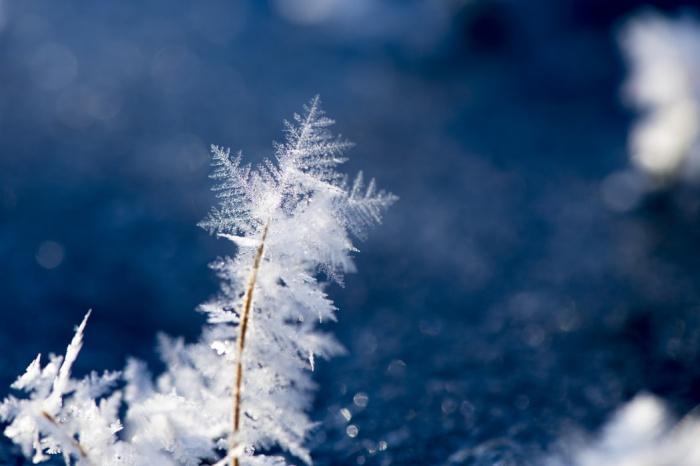На протяжении дня прогнозируется дальнейшее понижение температуры