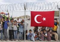 У сирийских беженцев в Турции родилось более 500 тысяч детей