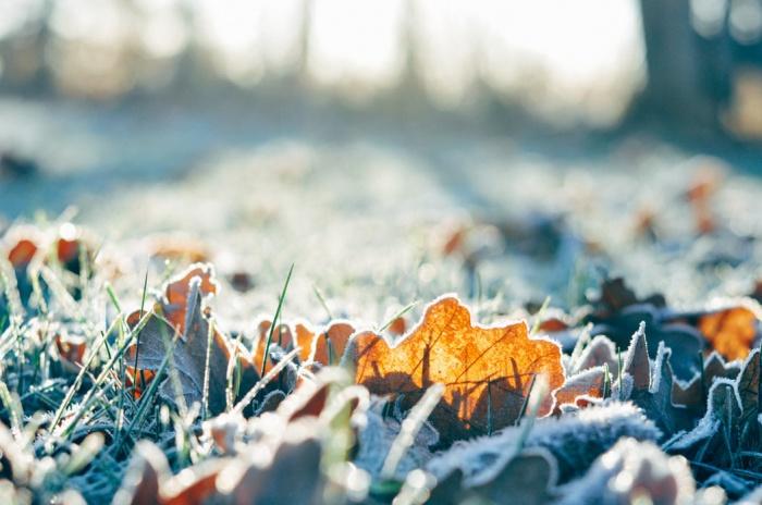 Температура понизится и на юге Дальнего Востока, там пройдут осадки