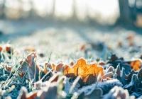 Синоптики пообещали российским регионам морозные выходные
