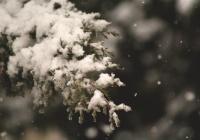 Специалист предупредил об аномальной погоде в декабре