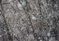 В Татарстане ожидаются снегопады