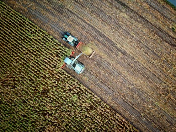 В наихудшем сценарии 90% мирового населения будут проживать в районах, где к концу столетия значительно упадет производство продуктов питания