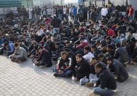 Около 3,5 тыс. беженцев арестовали в Турции за неделю